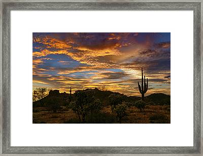 A Desert Dream  Framed Print by Saija Lehtonen