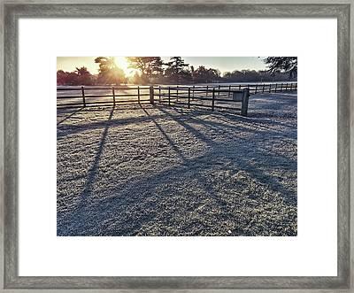 A Frosty Paddock Framed Print by Tom Gowanlock
