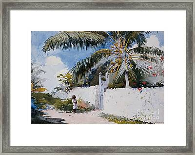 A Garden In Nassau Framed Print by Winslow Homer