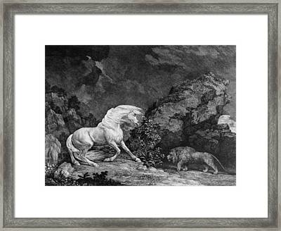 A Horse Affrighted By A Lion Framed Print by George Stubbs