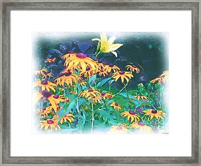 A Lily In The Field Framed Print by Patricia Griffin Brett