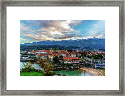 A Lot To See And Do Framed Print