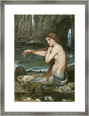 A Mermaid Framed Print