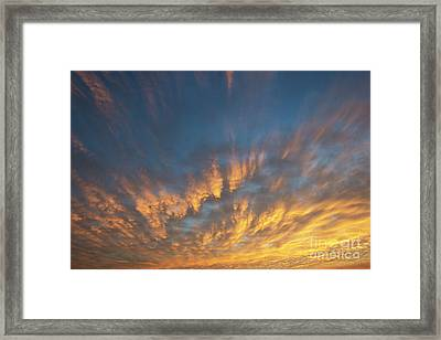 A New Dawn Framed Print by Tim Gainey