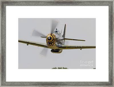 A P-51 Mustang Flies By At East Troy Framed Print by Rob Edgcumbe