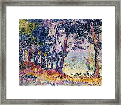 A Pine Grove Framed Print by Henri-Edmond Cross