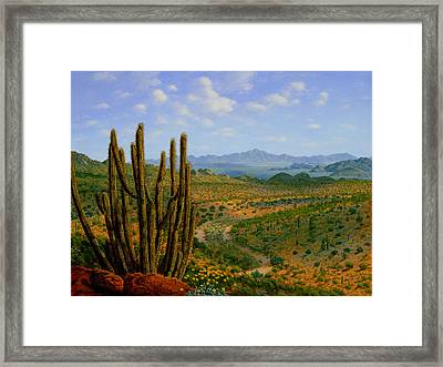 A Place Of Wonder Framed Print