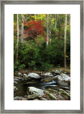 A Season In Time Framed Print by Mike Eingle