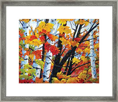 A Touch Of Canada Framed Print by Richard T Pranke