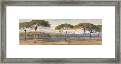 A View Of The Pine Woods Above Cannes Framed Print