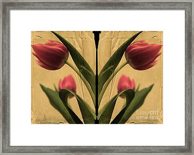 A Vintage Reflection Framed Print