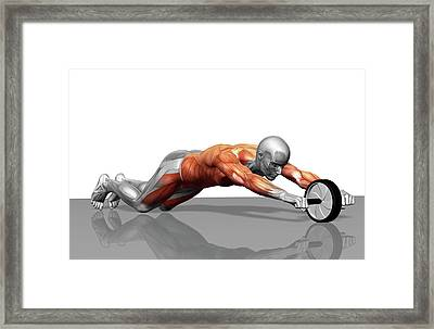 Ab Wheel Exercise Framed Print