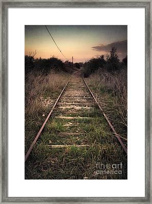 Abandoned Railway Framed Print by Carlos Caetano