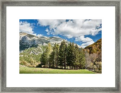 Abruzzo National Park, Italy Framed Print