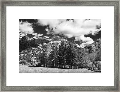 Abruzzo National Park, Italy Framed Print by Luigi Morbidelli