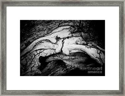 Abstract Vintage Black And White Closeup Framed Print