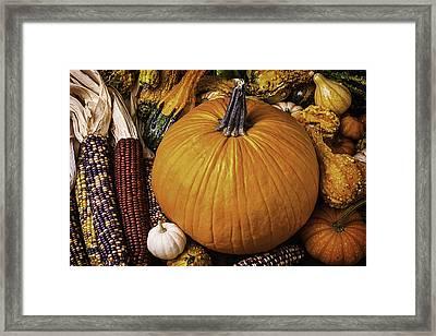 Abundance Of Autumn Framed Print