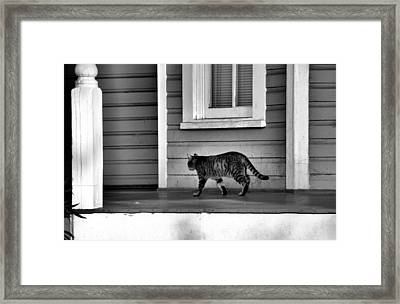 Across The Porch Framed Print by Jan Amiss Photography