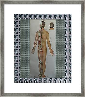 Acupuncture Full Body Map Points Posters Pod Pillows Curtains Duvets Tote Bags Phone Cases Greetings Framed Print by Navin Joshi