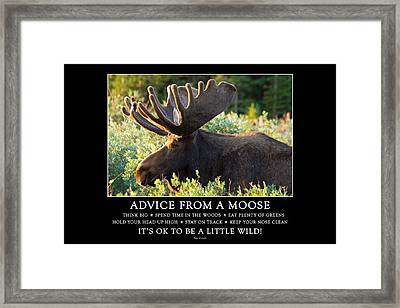 Advice From A Moose Framed Print