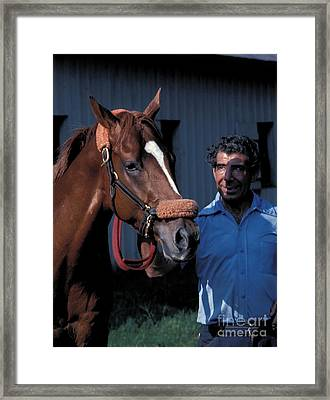 Affirmed - Triple Crown Winner Framed Print by Marc Bittan