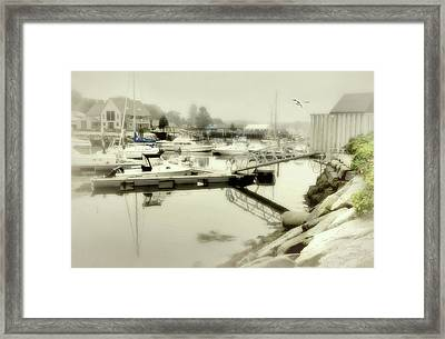 After The Rain Framed Print by Diana Angstadt