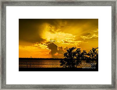Framed Print featuring the photograph After The Storm by Betty LaRue