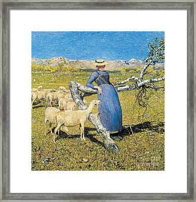 Afternoon In The Alps Framed Print by Giovanni Segantini