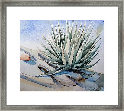 Framed Print featuring the painting Agave by Steven Holder