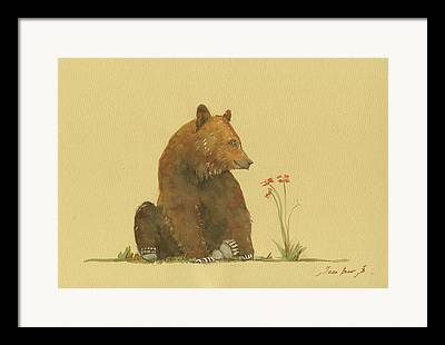 Brown Bear Art Framed Prints