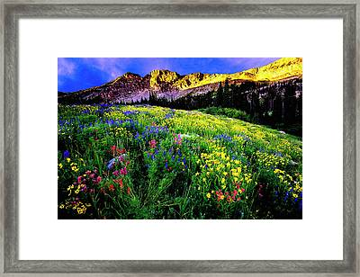 Framed Print featuring the photograph Albion Basin by Norman Hall