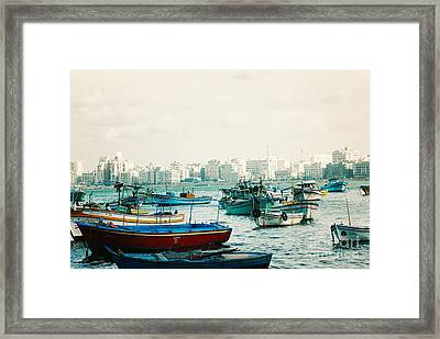 Alexandrian Harbour Framed Print by Cassandra Buckley