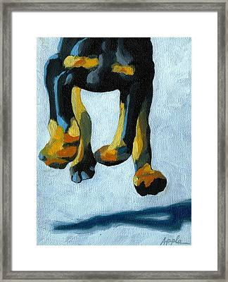 All Fours Framed Print by Linda Apple