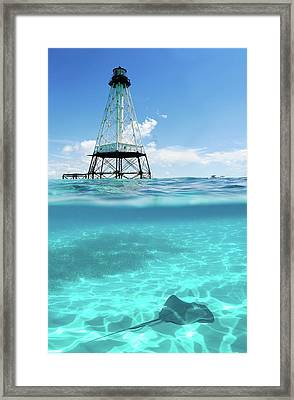 Alligator Reef Lighthouse Framed Print by Robert Stein
