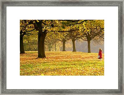 Alone In The Park Framed Print by Kobby Dagan