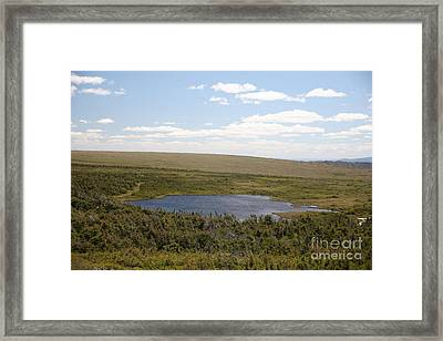 Alpine Tundra Lake Framed Print by Ted Kinsman
