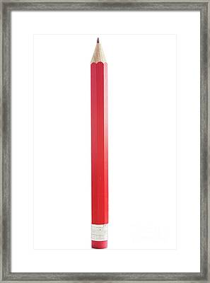 Amazing Isolated Pencil On Pure White Background Framed Print by Piotr Marcinski