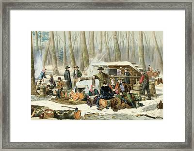 American Forest Scene Maple Sugaring Framed Print