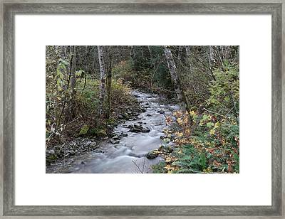 Framed Print featuring the photograph An Autumn Stream by Jeff Swan