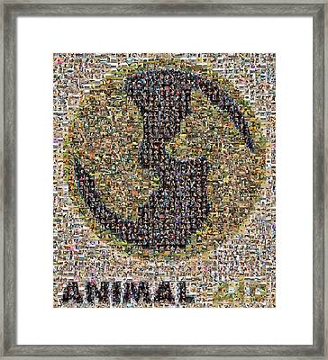 Animal Aid 2017  Framed Print