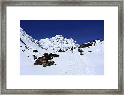 Annapurna South 7,219m Framed Print by Aidan Moran