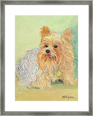Annie's Yorkie Framed Print by Kimberly McSparran