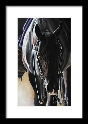 Pleasure Horse Framed Prints