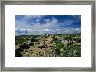 Appalachian Trail - White Mountains New Hampshire Usa Framed Print by Erin Paul Donovan