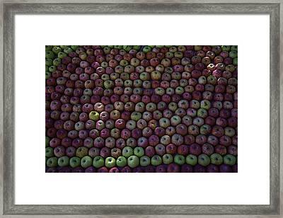 Apple Harvest Framed Print