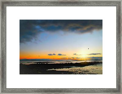 Approach Framed Print by Diana Angstadt
