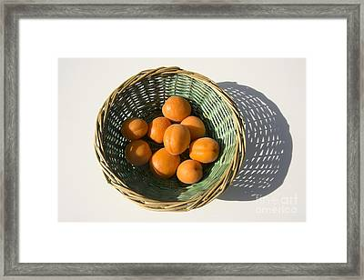Apricots Framed Print by Bernard Jaubert