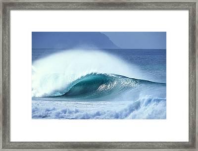 Aqua Plume Framed Print by Sean Davey