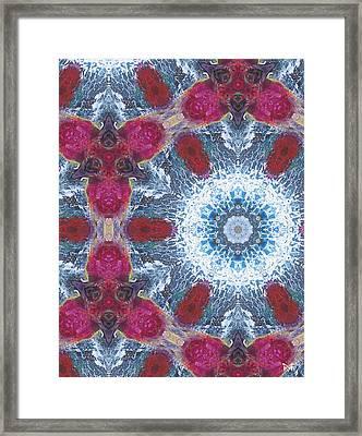Arctic Blossom Framed Print by Maria Watt