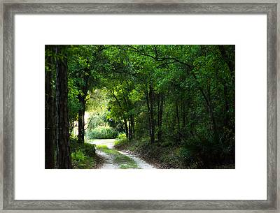 Around The Bend Framed Print by Shelby  Young